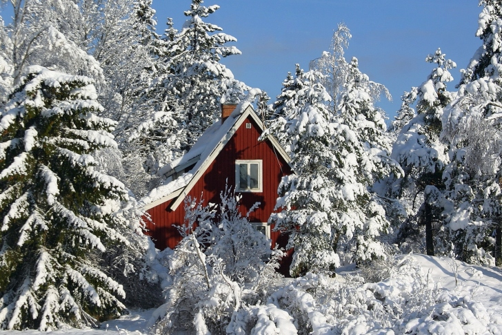 Winter in Sweden wallpaper