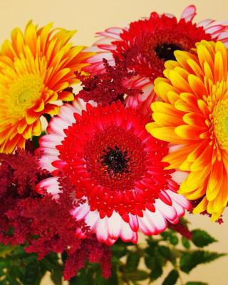 Gerbera Wedding Bouquet - Obrázkek zdarma pro 360x480
