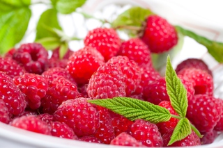 Plate Of Raspberries Wallpaper for Android, iPhone and iPad