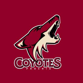 Phoenix Coyotes NHL Team - Obrázkek zdarma pro 1024x1024
