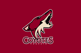 Phoenix Coyotes NHL Team Wallpaper for Android, iPhone and iPad