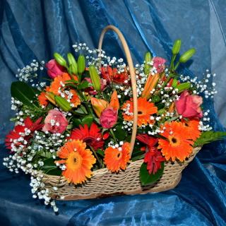 Gerbera Bouquet - Obrázkek zdarma pro 128x128