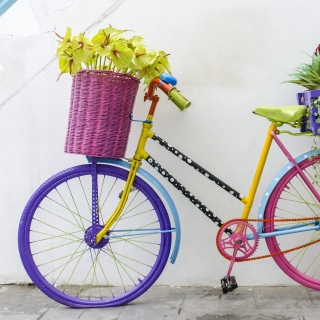 Flowers on Bicycle - Obrázkek zdarma pro iPad