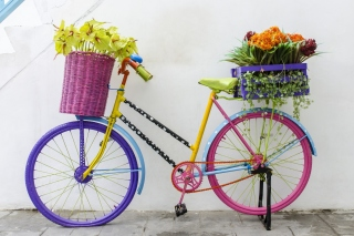 Flowers on Bicycle Picture for Android, iPhone and iPad