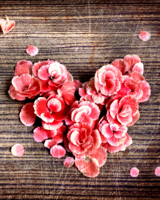 Heart Shaped Flowers - Obrázkek zdarma pro 352x416