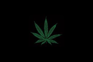 Marijuana Leaf - Obrázkek zdarma pro 1366x768