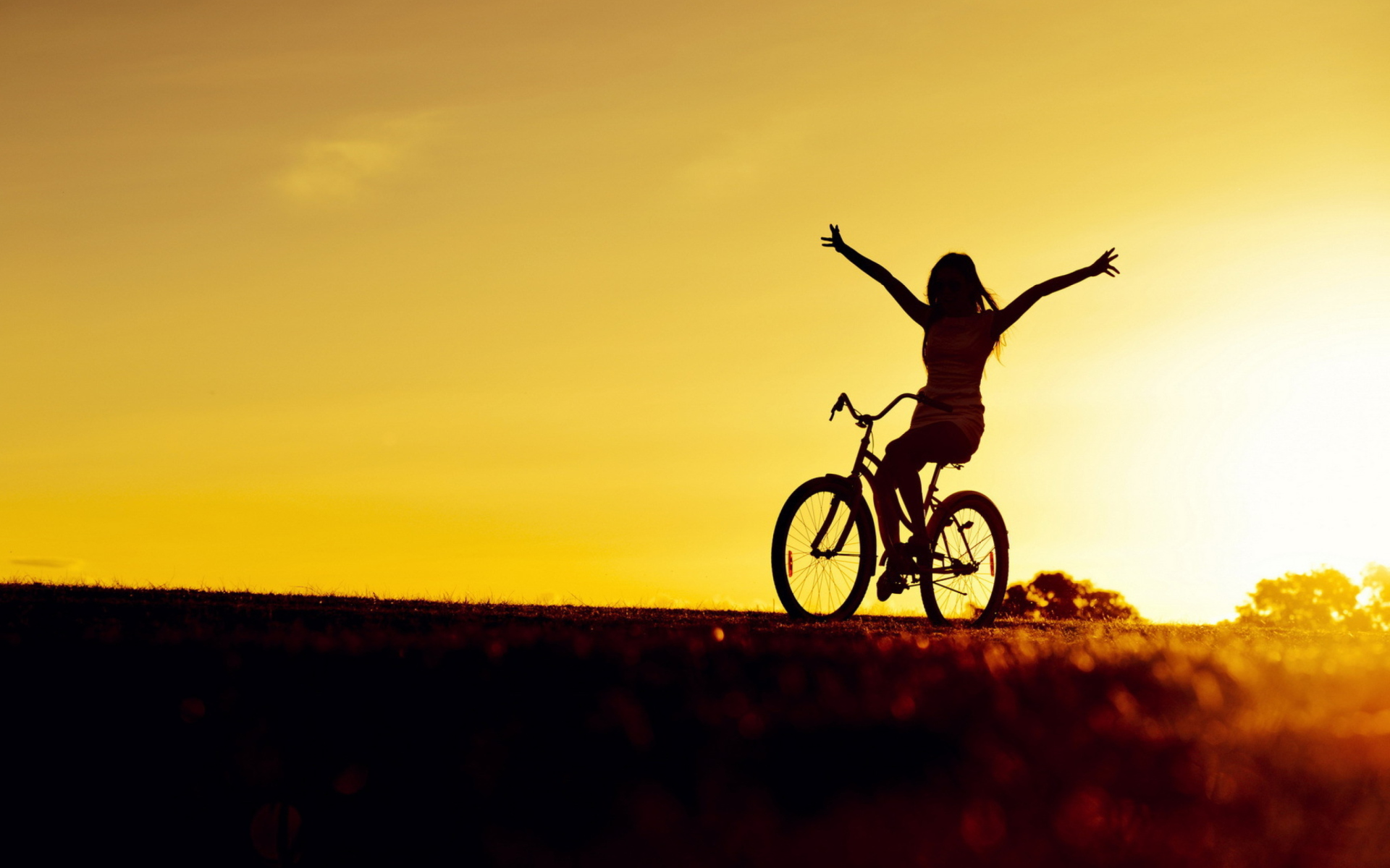 Bicycle Ride At Golden Sunset Wallpaper for Widescreen ...