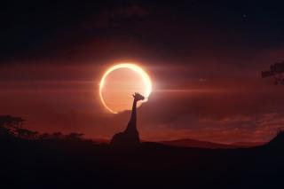 Eclipse - Obrázkek zdarma pro Samsung Galaxy S 4G