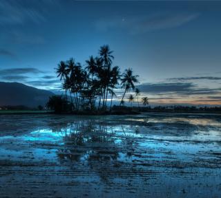 Malaysia - Obrázkek zdarma pro iPad Air