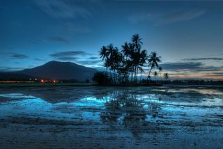 Malaysia - Obrázkek zdarma pro LG P500 Optimus One