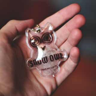 Owl Key Chain - Obrázkek zdarma pro iPad Air
