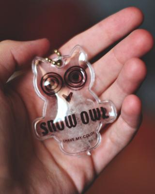 Owl Key Chain - Obrázkek zdarma pro 480x640