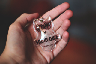 Owl Key Chain - Obrázkek zdarma pro 320x240