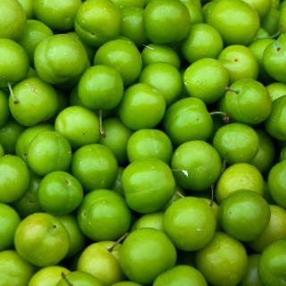 Green Apples - Obrázkek zdarma pro iPad mini
