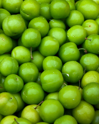 Green Apples - Obrázkek zdarma pro iPhone 5S