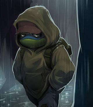 Sad Turtle - Obrázkek zdarma pro Nokia 300 Asha