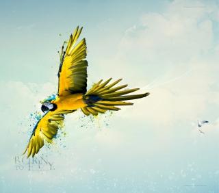 Born To Fly - Obrázkek zdarma pro iPad Air