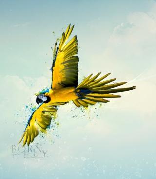 Born To Fly - Obrázkek zdarma pro Nokia C2-03