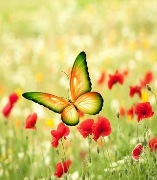 Butterfly - Obrázkek zdarma pro Nokia Asha 202