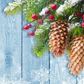 Indoor Christmas Decorations - Obrázkek zdarma pro 208x208
