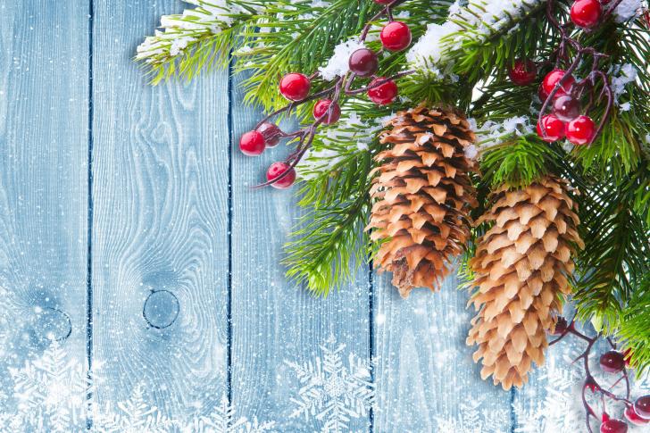 Indoor Christmas Decorations wallpaper