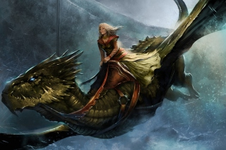 A Song of Ice and Fire Roleplaying - Obrázkek zdarma pro Widescreen Desktop PC 1280x800