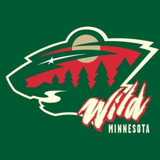 Minnesota Wild - Obrázkek zdarma pro iPad 3