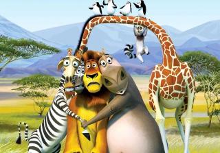 Madagascar - Obrázkek zdarma pro 1440x1280