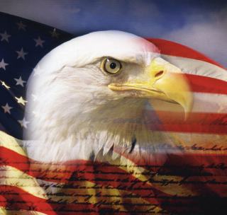 USA Flag - Obrázkek zdarma pro iPad mini