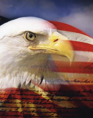 USA Flag - Obrázkek zdarma pro Nokia X3-02