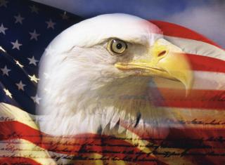 USA Flag - Obrázkek zdarma pro Nokia Asha 302
