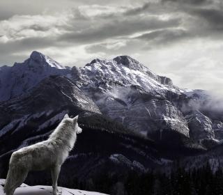 White Wolf In Mountains - Obrázkek zdarma pro iPad