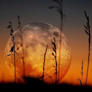 Big Moon - Obrázkek zdarma pro 208x208