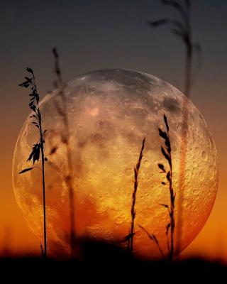 Big Moon - Obrázkek zdarma pro Nokia X7
