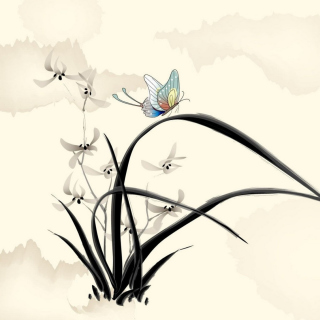 Butterfly Picture - Obrázkek zdarma pro iPad 2
