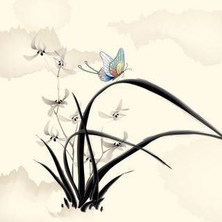 Butterfly Picture - Obrázkek zdarma pro iPad mini