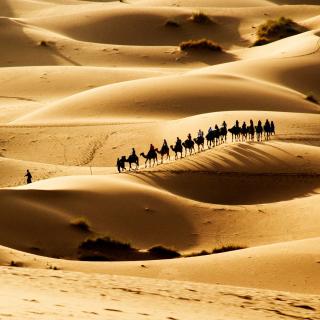 Camel Caravan In Desert - Obrázkek zdarma pro 128x128