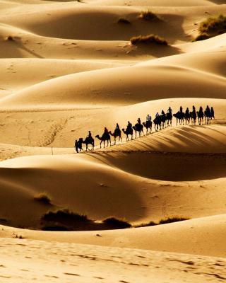 Camel Caravan In Desert - Obrázkek zdarma pro 176x220