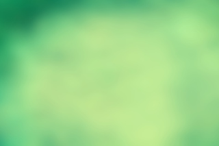 Pure Green Background for Android, iPhone and iPad