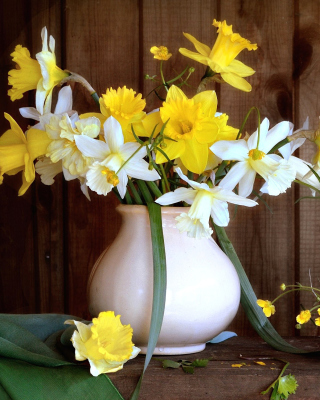 Daffodil Jug - Obrázkek zdarma pro 320x480