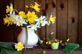 Daffodil Jug Background for Android, iPhone and iPad