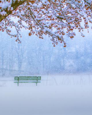 Park in Snow - Fondos de pantalla gratis para Huawei G7300