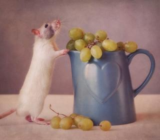 Mouse Loves Grapes - Obrázkek zdarma pro iPad