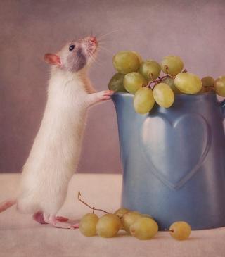 Mouse Loves Grapes - Obrázkek zdarma pro iPhone 6