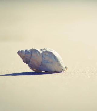 Lonely Seashell - Obrázkek zdarma pro 768x1280