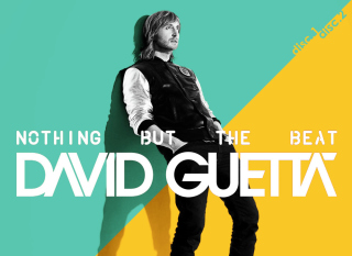 David Guetta - Nothing but the Beat - Obrázkek zdarma pro Samsung Galaxy Tab 7.7 LTE