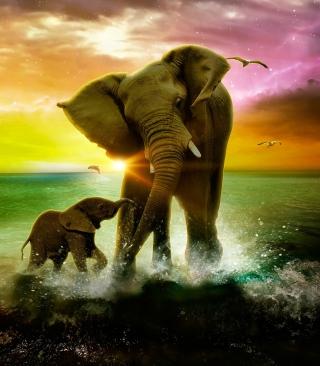 Elephant Family - Obrázkek zdarma pro iPhone 4S