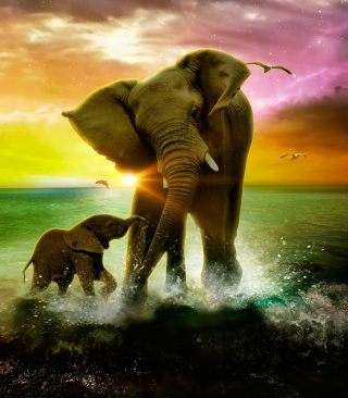 Elephant Family - Obrázkek zdarma pro Nokia Lumia 620