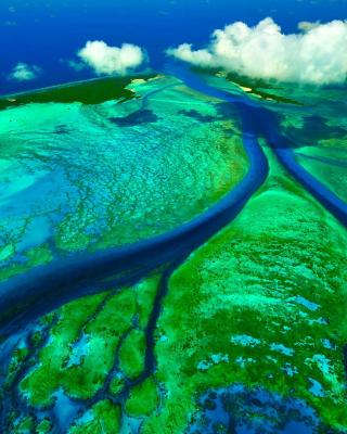 Aldabra Atoll, Seychelles Islands - Obrázkek zdarma pro Nokia Lumia 810