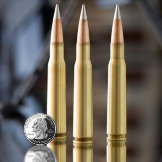 Bullets And Quarter Dollar - Obrázkek zdarma pro 128x128